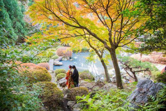 秋の庭園前撮り