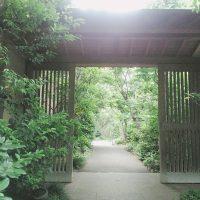 梅の花gate